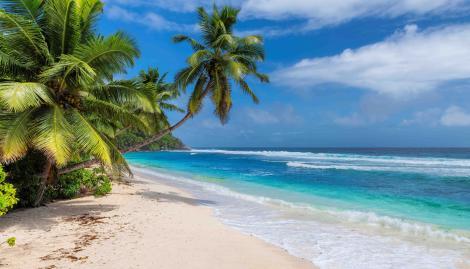 Egresados se quedaron sin su viaje al Caribe porque la empresa contratada quebró