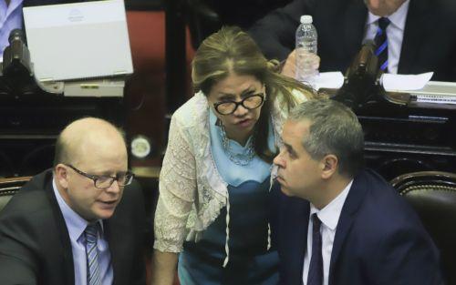 """Triple """"emergencia"""": sigue el acalorado debate entre diputados del oficialismo y oposición"""