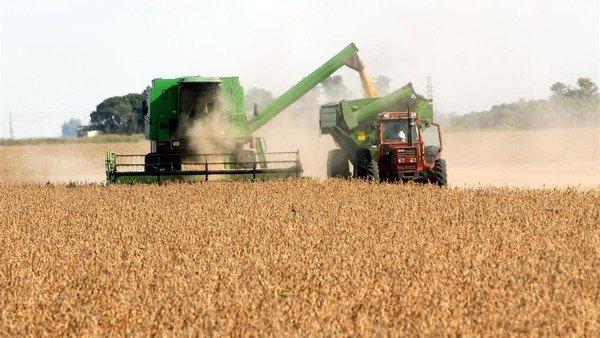 por-la-brecha-cambiaria,-los-productores-guardan-soja-por-4.700-millones-de-dolares