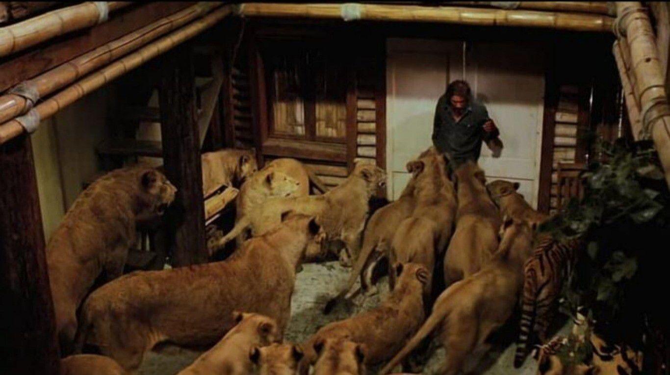 """""""roar"""",-la-pelicula-mas-peligrosa-de-hollywood:-150-animales-salvajes,-70-ataques-de-leones-y-actores-desfigurados"""