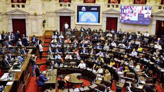 diputados-debate-un-proyecto-para-prevenir-y-erradicar-la-violencia-institucional
