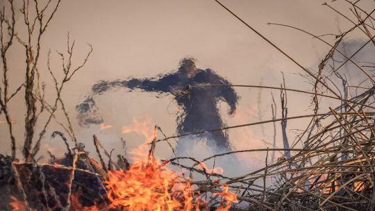 """ambientalistas-acusan-a-entre-rios-por-""""complicidad""""-en-los-incendios-de-los-humedales"""